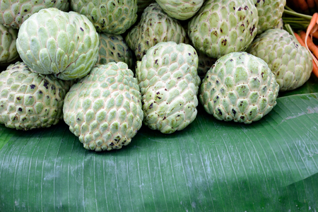 custard flavor: Custard apples have  pale green , knobby skin and soft , sweet flesh .