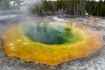 A beautiful hot spring in Upper Geyser Basin with green water surrounded by yellow ring edges.