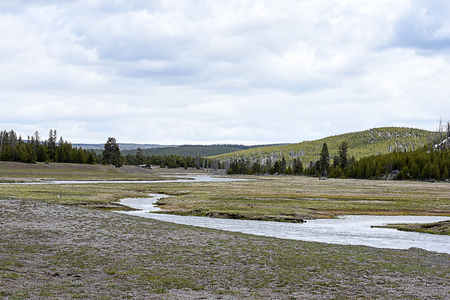 A river passes through a grassland with mountainous ranges and pine forest as a background.