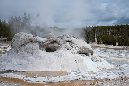 Steaming waters rising above the large vent of Grotto Geyser in Upper Geyser Basin in Yellowstone National Park, United States.