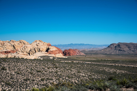 The desert plain of red rock valley with agaves and flowerring plants in the foreground.