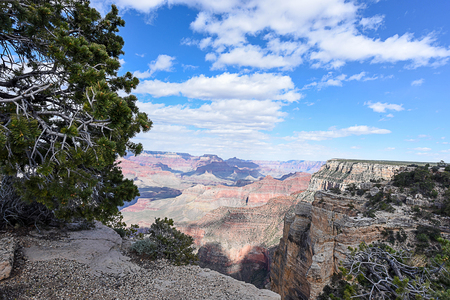 A scenic overlook of water - carved Grand Canyon with layers of rocks cut through by the Colorado River and steady erosion over millions of years.