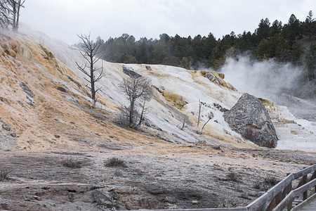 The terraces made of crystallized calcium carbonate at Mammoth Hot Spring , Yellowstone National Park. Фото со стока