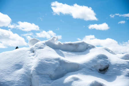 Heavy snow deposited to be an icy mass in winter in Yellowstone National Park. Stock Photo
