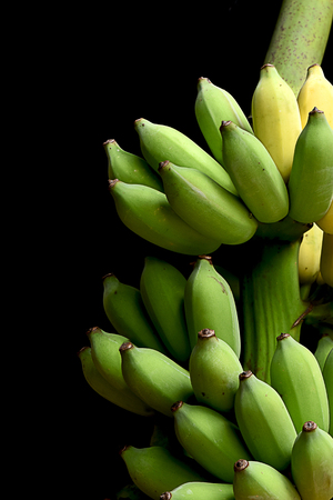 The clusters of tropical fruits with protective outer layer and the edible inner portion.