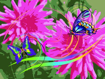 barberton daisy: flower