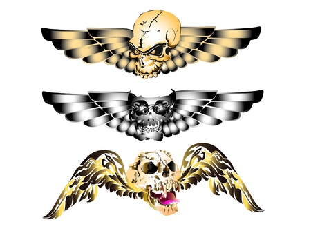 skull art tattoo wings Vector