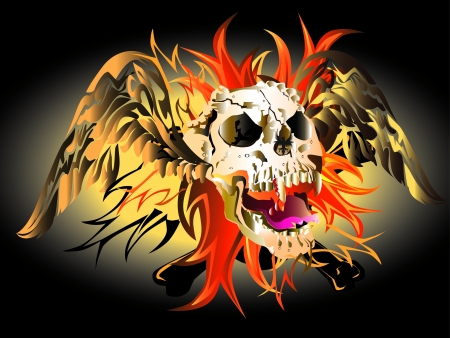 fire skull: skull hard rock Illustration