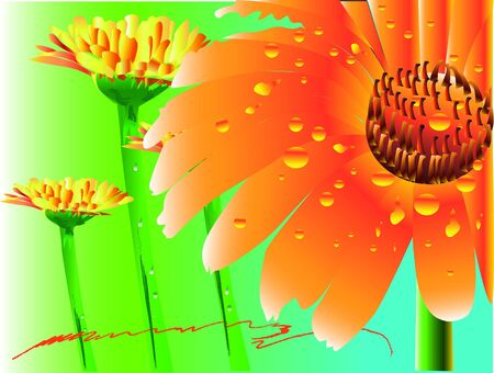 daisy and gerbera art floral Stock Vector - 17149160