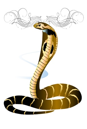 cobra art