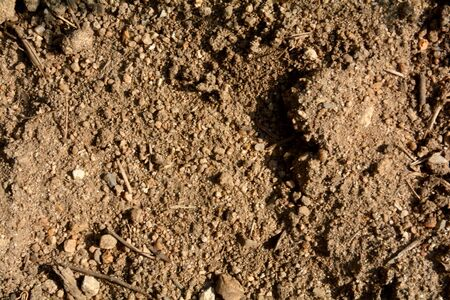suelo arenoso: textute arena Foto de archivo