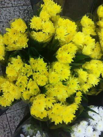 yellow: Flower yellow in market