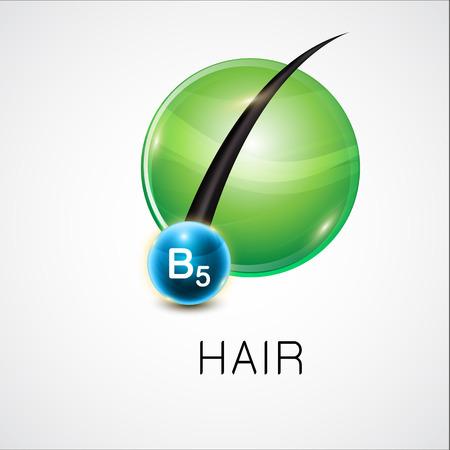 Vector illustratie van een haarfollikel voor en na de behandeling. Overgang van slecht beschadigd haar tot gezond haar. Haarverzorging en versterking concept.