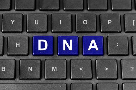 �cido: ADN o �cido desoxirribonucleico palabra en el teclado