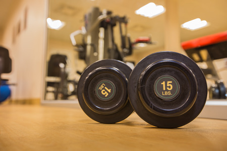 muscle building: Drumbell 15 Lb size in gym room for exercise,weight training and muscle building