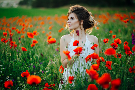 Beautiful young girl in poppy fields at sunset. Imagens