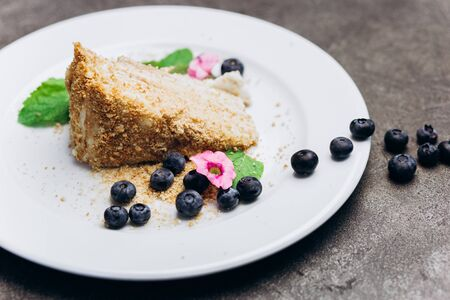 Slice of honey cake on plate decorated with berries on a gray background.