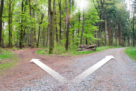 Crossroads two different directions - Choose the correct way.