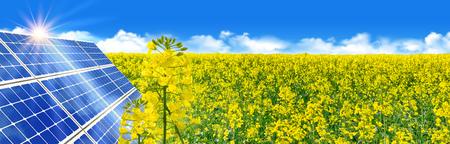 Solar power - Solar energy in yellow canola field