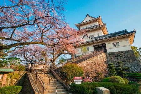 Odawara Castle in spring 写真素材