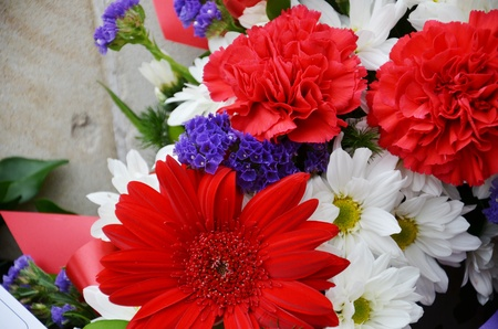 Close up picture of different types of flowers Stock Photo - 13320018