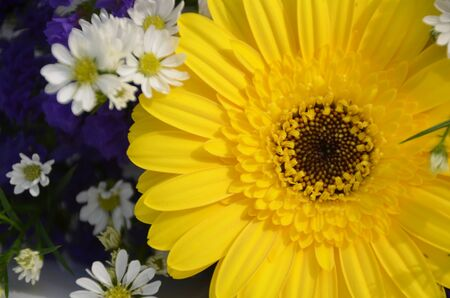 Yellow gerbera mixed with different types of small flowers photo