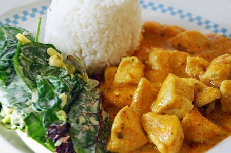 Chicken korma with steamed rice and salad photo
