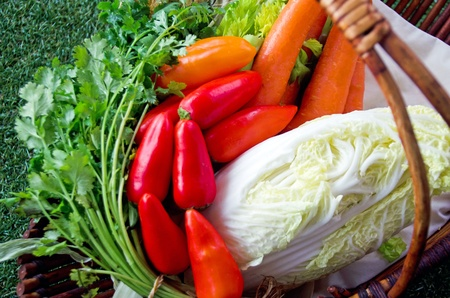 parsley digestion: Healthy food; mixed vegetables  in a basket