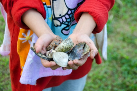A girl with sea shells in her hands photo