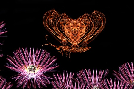 Illuminated flower and butterfly design photo