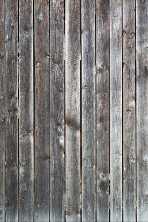 wooden texture: Old wooden texture