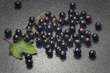 blackcurrant: Blackcurrant on stone table