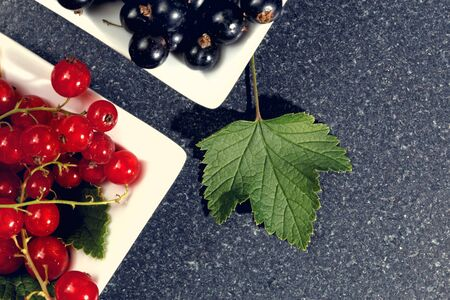 redcurrant: Redcurrant and blackcurrant on stone table