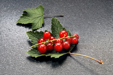 redcurrant: Redcurrant on stone table