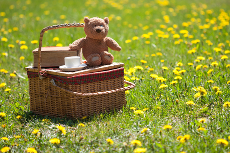 Picnic basket and book on the grass