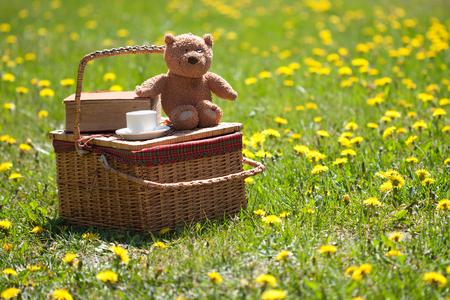 Preparación de picnic y libro sobre la hierba Foto de archivo - 58582578