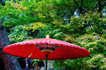 tradition: Red umbrella