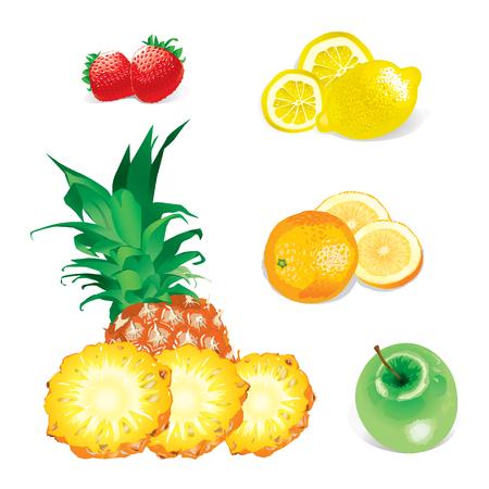jpeg: Fruits (editable vector or XXL jpeg image)