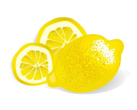 Lemon (vector or XXL jpeg image) Illustration