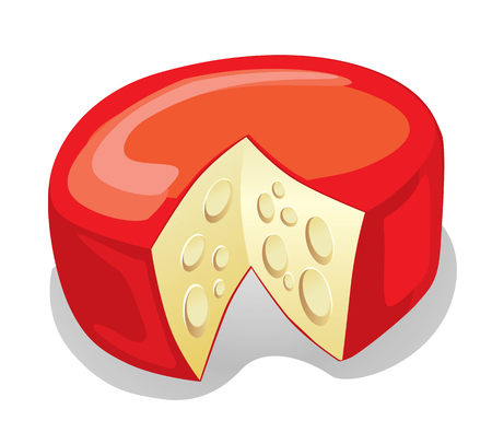 white cheese: Cheese (vector or XXL jpeg image)