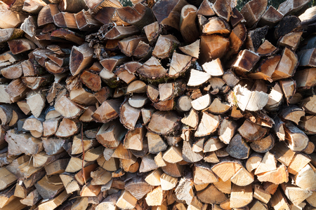 felled: Stack of felled timber
