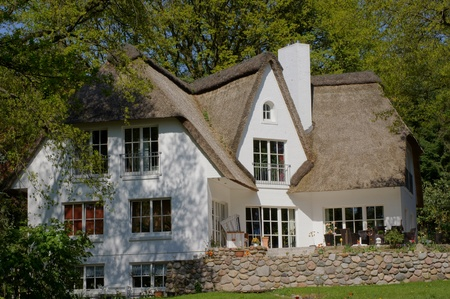 thatched house:  Reed covered house