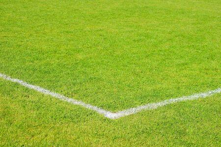 sports hall: Football turf                    Stock Photo