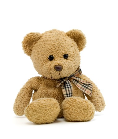stuffed animals: teddy bear on a white background with path