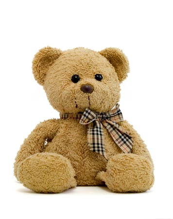 favorite colour: teddy bear on a white background with path