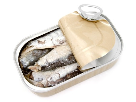 sardines: close up of tin with fish on white background with path
