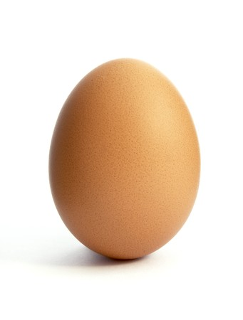 close up of egg on white background with path photo