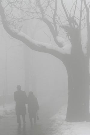 elderly man and woman walking in fog photo