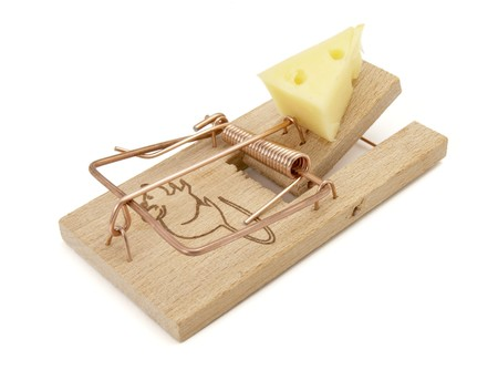 close up of mousetrap with cheese on white background with path photo