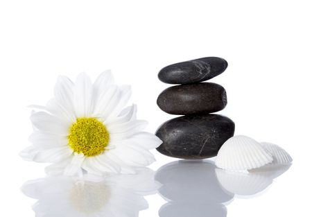 well being concept with flower, stones and shells on white background photo